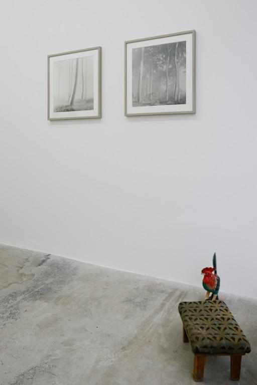 Ginerva Gambino Simone Gilges The Voyage