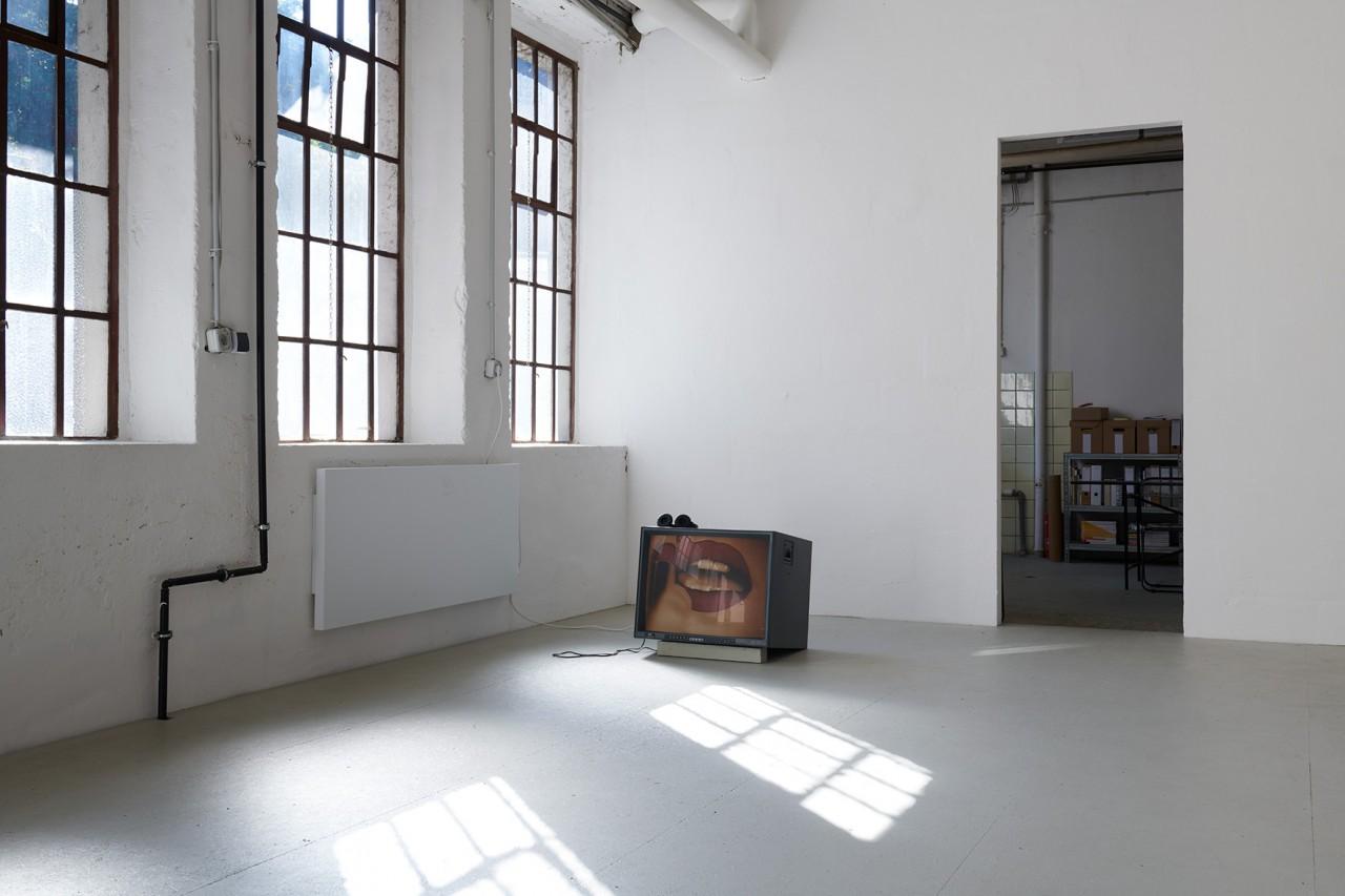 Ginerva Gambino Okey Dokey 3 – Fenster